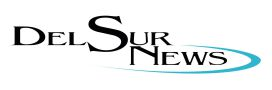 DSN-Logo-web-2